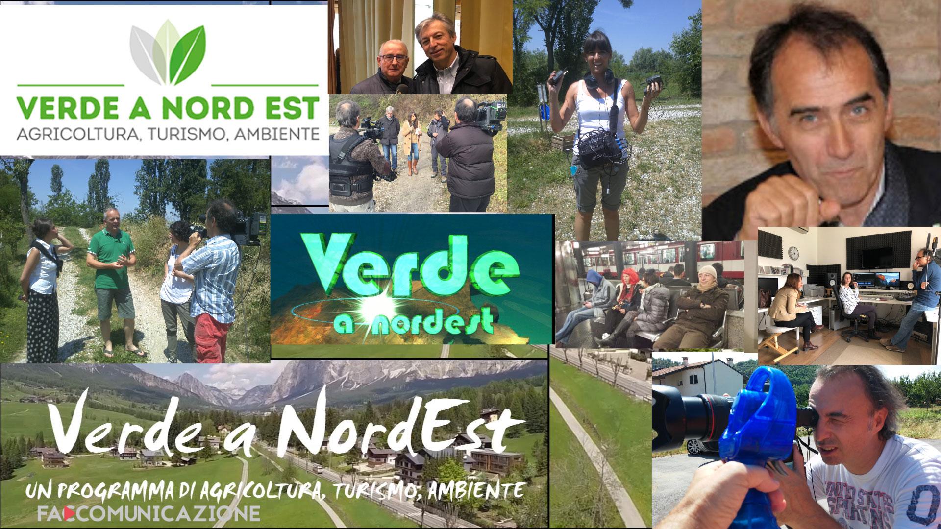 Verde a Nordest - format televisivo
